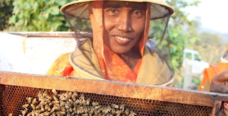 World Food Day 2015 - Meet the women harvesting honey in rural India